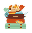 stack suitcases on a white isolated background vector image