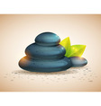 Peaceful and relaxing card with spa items vector image