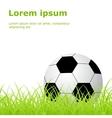 soccer ball grass vector image