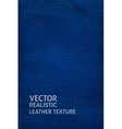 Blue leather vertical background vector image vector image