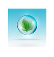 bubble with leaf vector image vector image