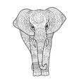 Elephant coloring book for adults vector image vector image