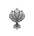 engraving tattoo blackwork ornament vector image vector image
