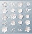 realistic paper flowers transparent set vector image vector image