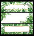 tropical leaves banners exotic palm leaf banner vector image