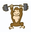 awesome kingkong fitness cartoon collection vector image