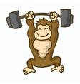 Awesome kingkong fitness cartoon collection