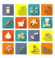 Spices icons flat vector image