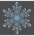 Big translucent crystal snowflake vector image vector image