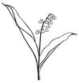 landish vector image vector image