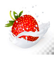 Red strawberry in a milk splash on a transparent vector image vector image