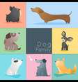 Set of dog family vector image