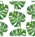 watercolor monstera leaf seamless pattern vector image vector image