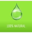 Green natural template with a water drop vector image