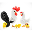 cute cartoon chicken family dad cock mom chicken vector image