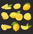 icon collection of sliced and whole lemons vector image