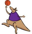 kangaroo basketball sport mascot cartoon vector image vector image