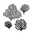 set of sea reef corals black silhouette isolated vector image