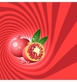 Striped spiral pomegranate confectioners vector image vector image