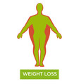 weight loss concept with human body silhouette vector image