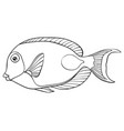 adult coloring bookpage a cute fish image vector image vector image