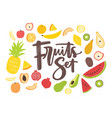 collection of delicious ripe juicy exotic tropical vector image