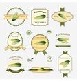 Cucumber set of label design vector image vector image