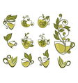 organic tea collection vector image vector image