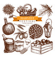 vintage autumn sketch collection vector image vector image