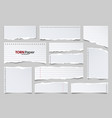 white ripped lined paper strips collection vector image vector image