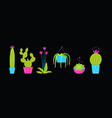 cactus and succulets on black background isolated vector image vector image