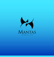 mantas swimming or diving club logo vector image vector image