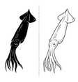 squid silhouette sea animal vector image vector image