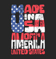 vintage denim typography american t-shirt graphics vector image