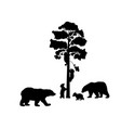 bear family silhouettes animals vector image vector image