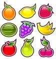 glossy fruits vector image vector image