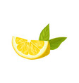 slice of juicy lemon and two green leaves healthy vector image vector image