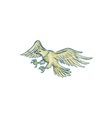 Bald Eagle Swooping Etching vector image