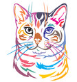 colorful decorative portrait of bengal cat vector image vector image