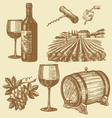 hand drawn of wine vector image