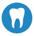 healthy tooth icon oral dental hygiene vector image