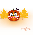 pumpkin and autumn background vector image vector image