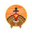 thanksgiving turkey bird vector image vector image
