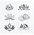 Set of lotuses vector image