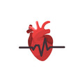 anatomical heart isolated heart diagnostic center vector image vector image