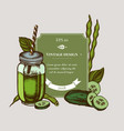badge design with colored green beans basil vector image