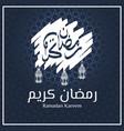 brush strokes ramadan kareem with lantern vector image