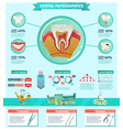 Dentist Checkup Importance Infographic Flat Banner vector image vector image