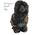 dog breed Portuguese Water Dog vector image vector image
