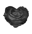 Heart-rose object flower on a white background vector image vector image